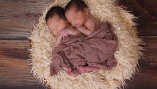 babies twins