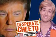 trump randy rainbow desperate cheeto