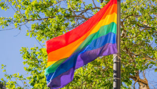 rainbow-flag-pride