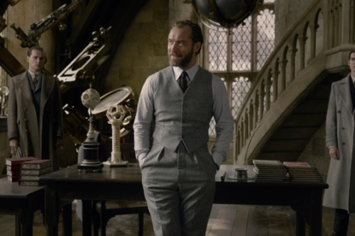 Jude Law portrays a young Albus Dumbledore in the Fantastic Beasts franchise.