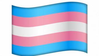 trans-flag-emoji1-323x183.jpg