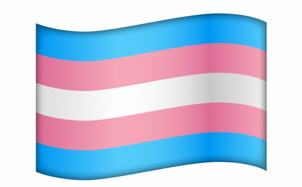 Unicode refused to approve a trans flag emoji. Instead we ...