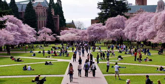 University of Washington made the Campus Pride cut in 2018.