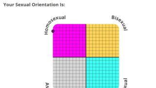 Sexuality test of Am I