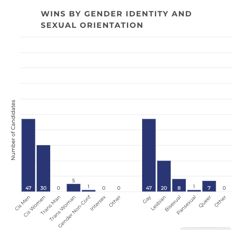 A chart breaking down the gender and sexual orientation of the LGBTQ political candidates who won in 2019.