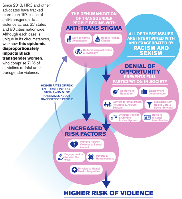 The Human Rights Campaign's infographic explaining how systemic oppression results in higher rates of violence for trans and non-binary people.