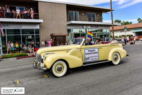 DeeAnn Hopings, Pride in Pictures