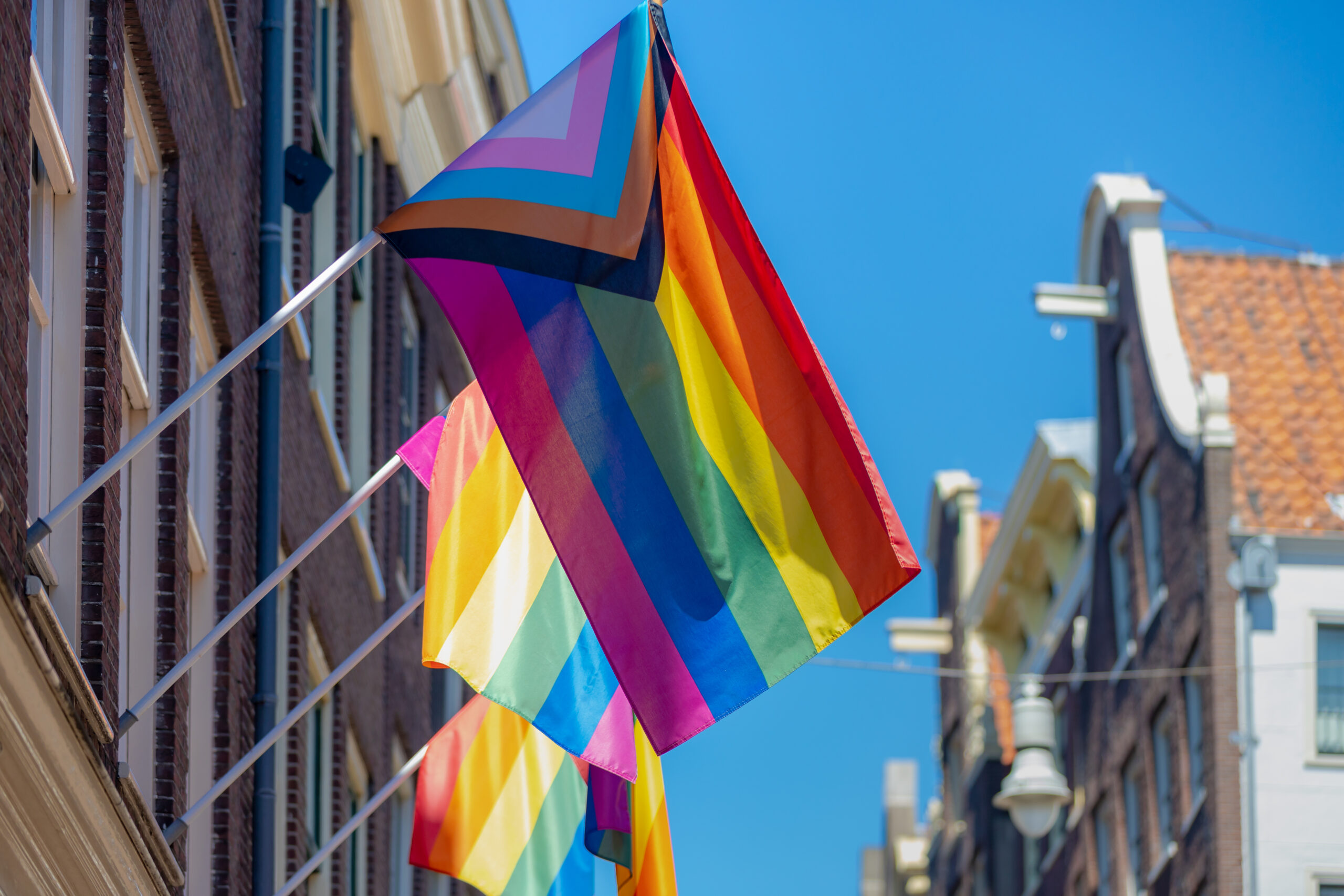 How many versions of the Pride flag are there now? You might be surprised.